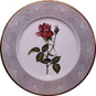 A white dinner plate with a gray outer ring and a red rose in the center
