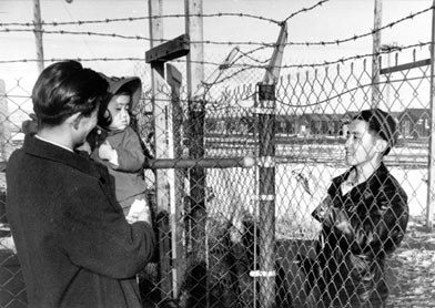 in the Internment Camps